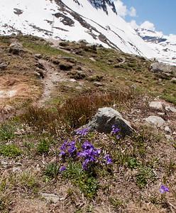 St  Moritz-01571
