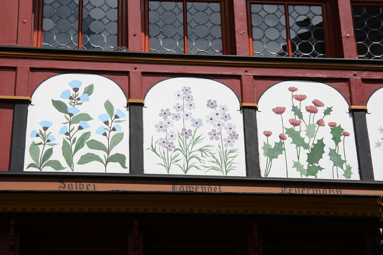 All kinds of plants used in medicine are painted on the front of the building.
