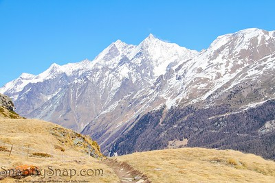 Trail in the High Alps