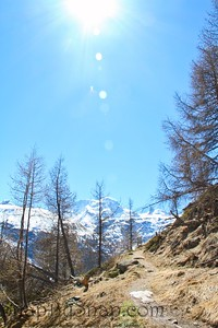 The bright sun shining on a trail in Zermatt, Switzerland.