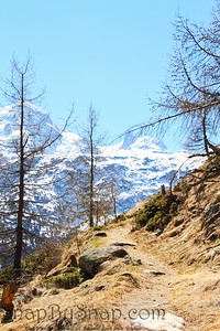 Zermatt Hiking Trail
