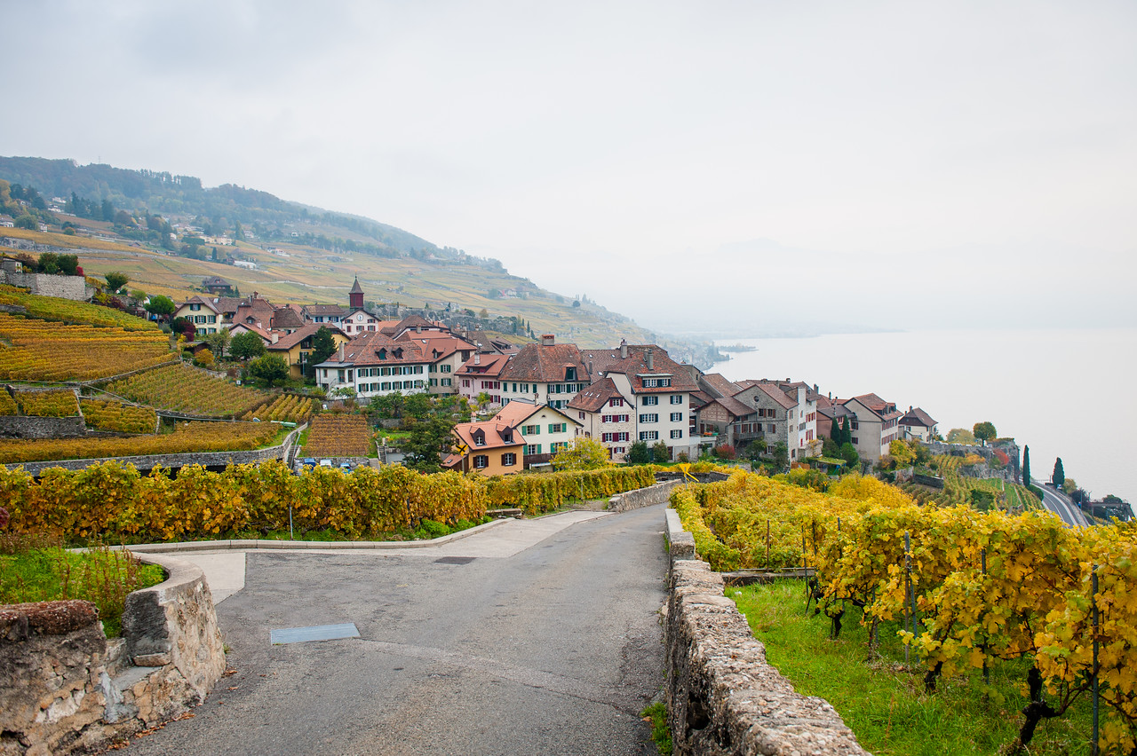 The vineyards around Vevey.