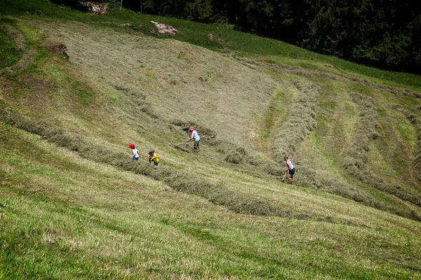 Raking the Hay