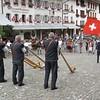 Alpine horn demonstration