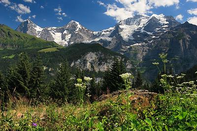 Eiger, Mönch and Jungfrau, Bernese Oberland