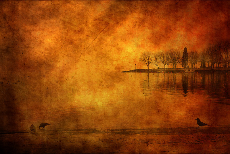 Crows Lake