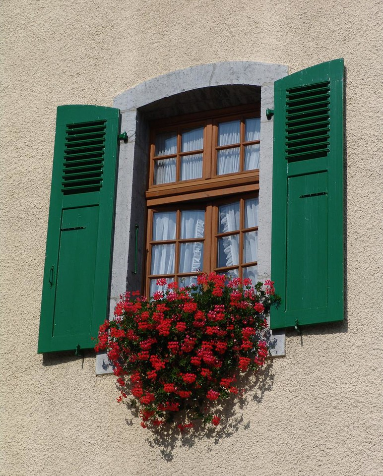 Red Flowers, Green Shutters by Alan Clay Knapp