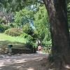 Scenic Walk, Yvoire