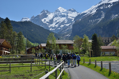 Hiking Group Excursions