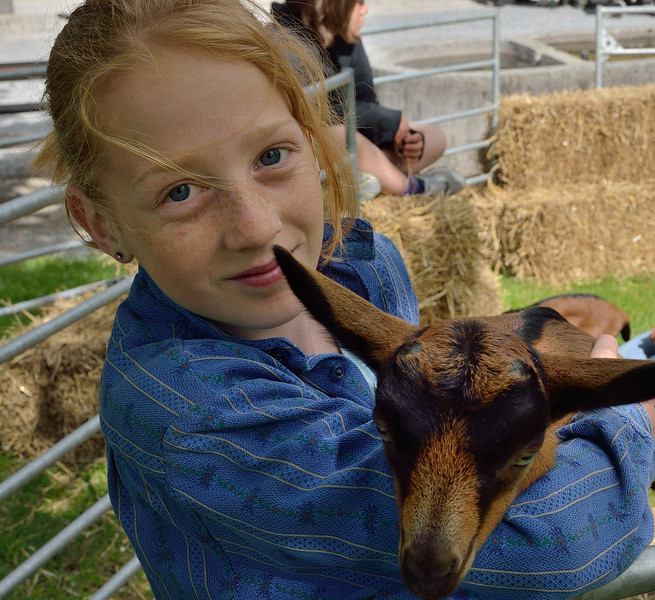 Children show the farm animals on this special exhibit at Ballenberg Open-air museum..<br /> Sunday, May 20, 2012