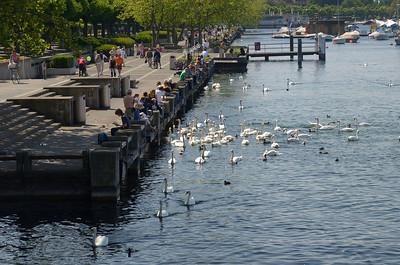 Zurich and Winterthur