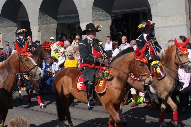The horses have fancy headgear.