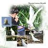 9kBotanic Gardens Birds 4
