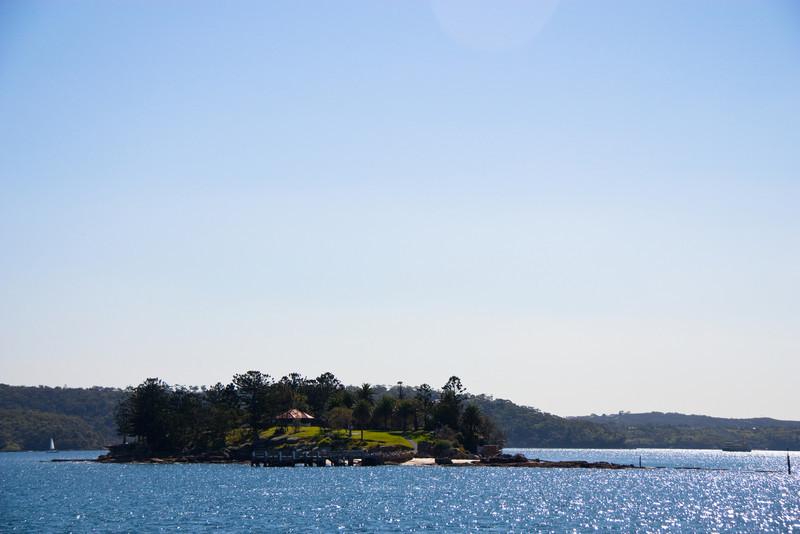 Shark Island as seen from Rose Bay.