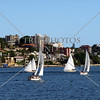 Sailboats cruising the harbour in Sydney, Australia.