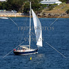 Sailboat cruising at Sydney Harbour in Australia.