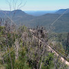 View in the Blue Mountains of New South Wales, Australia.