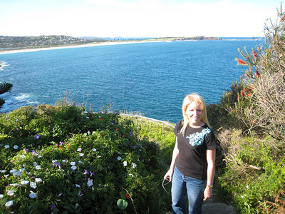 On the walk from Dee Why to North Curl Curl.