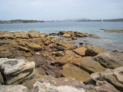 On the walk from Watsons Bay to South Head.
