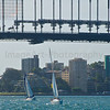 Sailing under Sydney Harbour Bridge