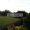 Bowral Tulip Festival, Bowral, NSW, September 2007, Green Briar Park , Tulip Time