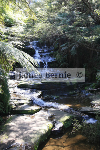 The Blue Mountains (west of Sydney), NSW, September 2007