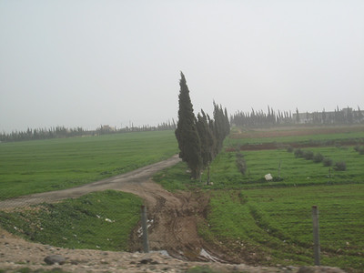 On the road back to Damascus.