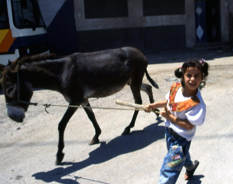Little girl leading a donkey in Maaloula, Syria.