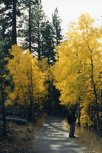 Tahoe-Taylor Vstr Ctr0003