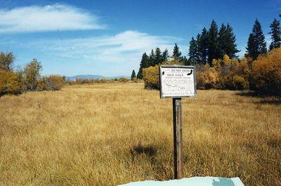 Tahoe-Taylor Vstr Ctr0002