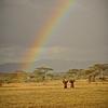 TANZANIA WEB EDITS November 2012 (467 of 732)