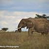 TANZANIA WEB EDITS November 2012 (455 of 732)
