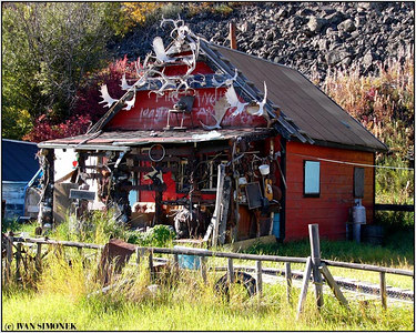 """SLIGHTLY OVERDECORATED"", near Telegraph Creek, B.C., Canada-----""MALINKO PREDEKOROVANO""."