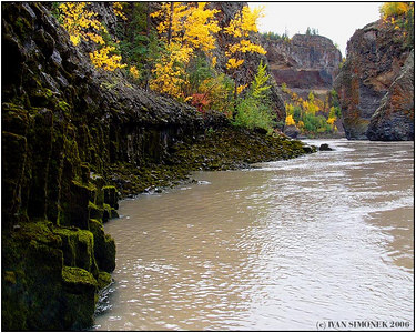 """IN THE CANYON"", Grand Canyon of Stikine, B.C., Canada-----""V KANONU""."