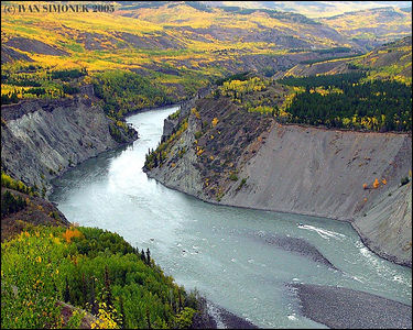 """GRAND CANYON OF STIKINE #2"", B.C.,Canada."