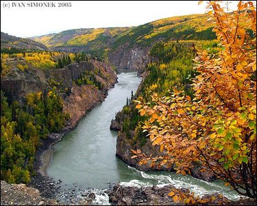 """GRAND CANYON OF STIKINE #3 "", B.C.,Canada."