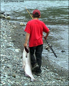 """A BIG CATCH"",a Tahltan boy and a big King salmon caught in Stikine river inside Grand Canyon of Stikine, B.C.,Canada-----""VELKY ULOVEK"", tahltansky chlapec a velky losos kralovsky uloveny v rece Stikine uvnitr Grand Canyon of Stikine, B.K.,Kanada."