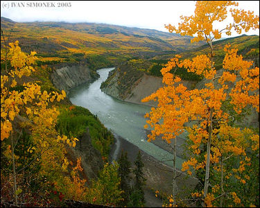 """GRAND CANYON OF STIKINE #1"", B.C.,Canada."