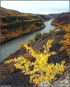 """STIKINE RIVER AND TELEGRAPH CREEK"", B.C., Canada.-----""REKA STIKINE A TELEGRAPH CREEK"", B.K., Kanada."