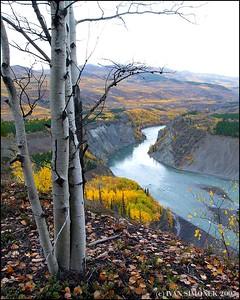 """GRAND CANYON OF STIKINE #4 "", B.C.,Canada."