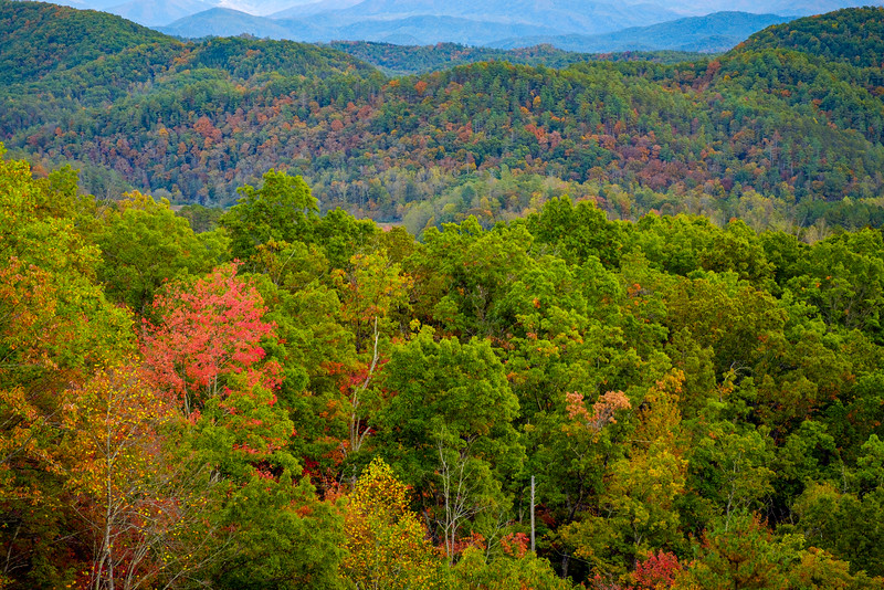 FOOTHILLS PARKWAY  - GREAT SMOKY MOUNTAINS NP