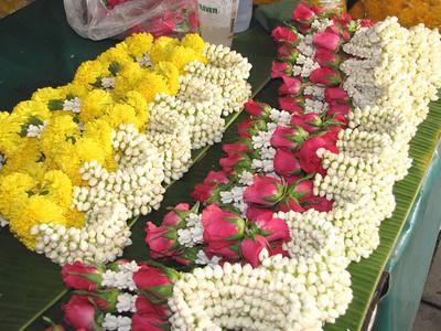 THAILAND - FLORA