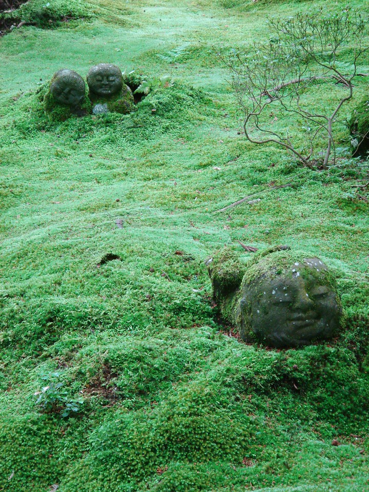 JIZO IN A SEA OF MOSS