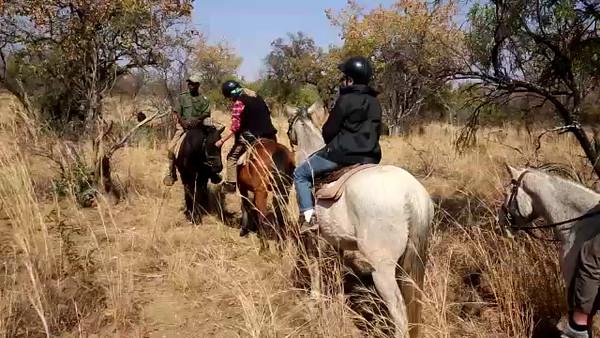 South Africa Video for SmugMug-#10-Horsback Riding