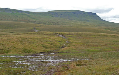 The boggy path looking back to Pen-y-ghent