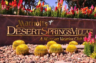 Marriott's Desert Springs Villa's II March, 2012