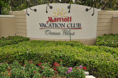Marriott's Oceana Palms March 2014