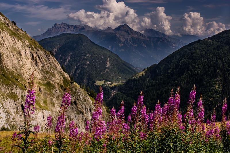 Switzerland from Col de Balme