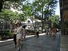 Pedestrian bridges cross busy Omotesando, but too far apart