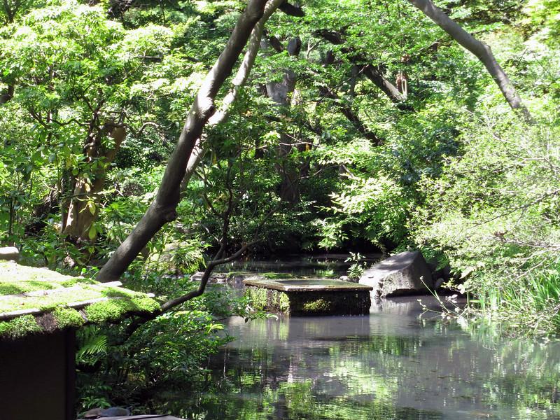 Nezu museum pond